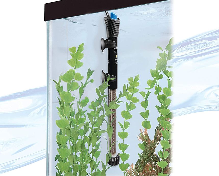 How Do I Know if My Aquarium Heater is Working?