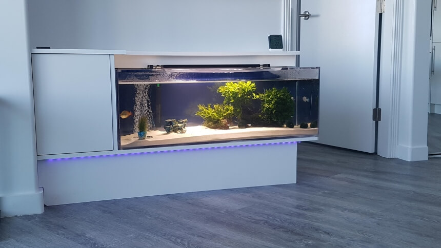 How to Remove Hard Water Stains from a Fish Tank