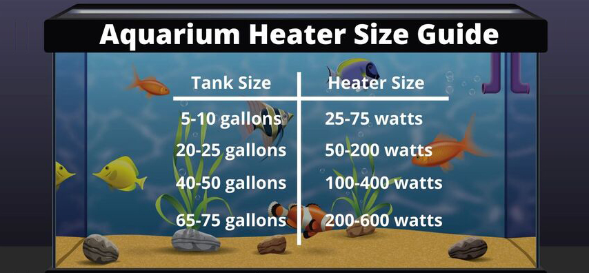 How to Determine an Optimal Aquarium Heater Size